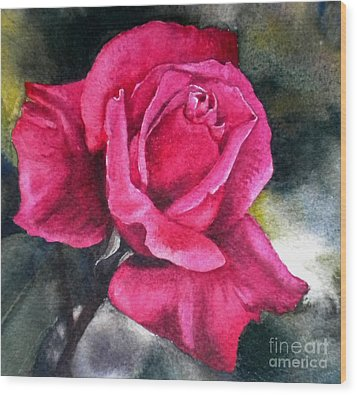 Wood Print featuring the painting Rosenberger Rosa Family Rosaceae by Sandra Phryce-Jones