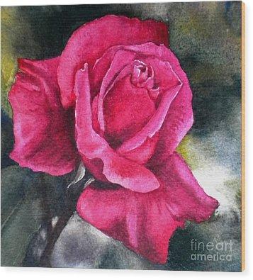 Rosenberger Rosa Family Rosaceae Wood Print by Sandra Phryce-Jones