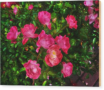 Roses Bush Wood Print by Aleksandr Volkov