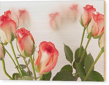 Roses Wood Print by Tom Gowanlock
