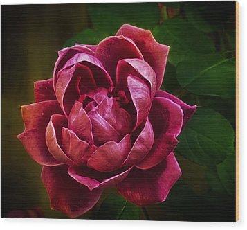 Rosy Pink Wood Print by Bill Tiepelman