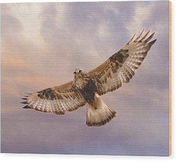 Rough Legged Hawk Wood Print