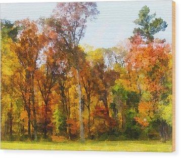 Row Of Autumn Trees Wood Print by Susan Savad
