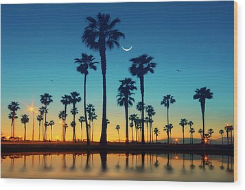 Row Of Palm Trees Wood Print by Lee Sie Photography