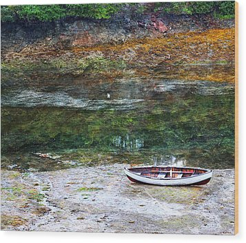 Rowboat In The Slough Wood Print by Michele Cornelius