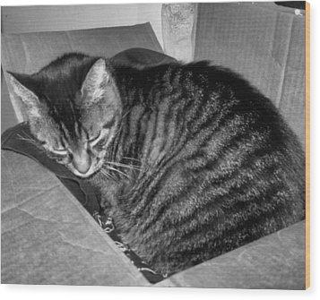 Rox In A Box Wood Print by Juliana  Blessington