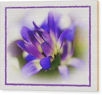 Royal Purple Wood Print by Judi Bagwell