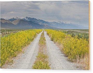 Ruby Mountains Wildflower Road Wood Print by Sheri Van Wert