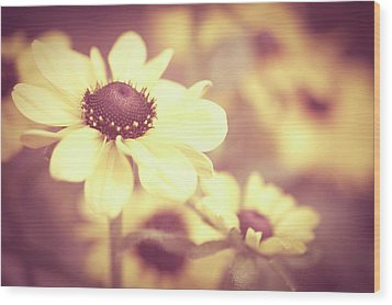 Rudbeckia Flowers Wood Print by Dhmig Photography