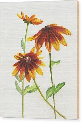 Rudbeckia Hirta Wood Print by Sharon Freeman