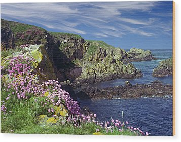 Wood Print featuring the photograph Rugged Coast by Rod Jones