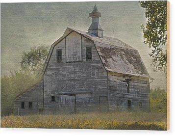 Rural America IIi Wood Print by Christine Belt