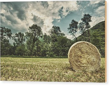 Rural Landscape With Hay Bale Wood Print by sisifo73photography by Marco Romani