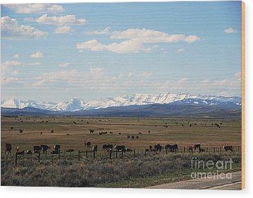 Rural Wyoming - On The Way To Jackson Hole Wood Print by Susanne Van Hulst