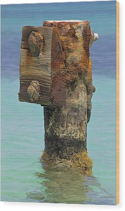 Rusted Dock Pier Of The Caribbean Iv Wood Print
