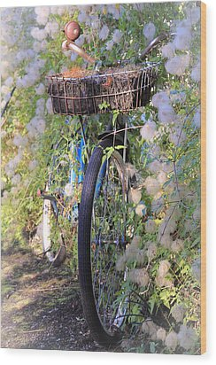 Rustic Bicycle Wood Print by Athena Mckinzie