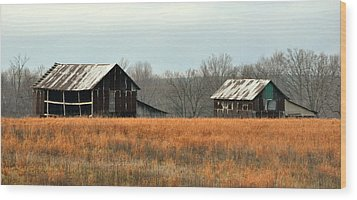 Rustic Illinois Wood Print by Marty Koch