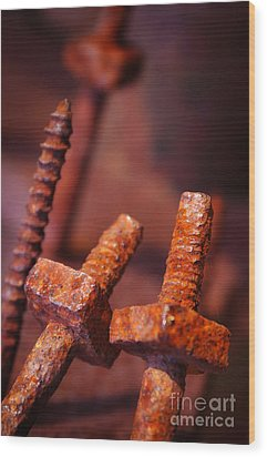 Rusty Screws Wood Print by Carlos Caetano
