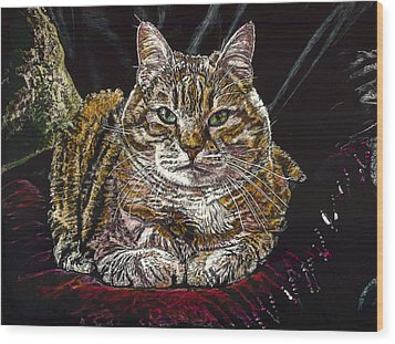 Ruthie The Cat Wood Print by Robert Goudreau