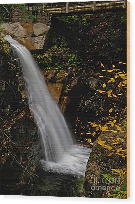 Sabbaday Falls In Nh Wood Print by Scott Moore