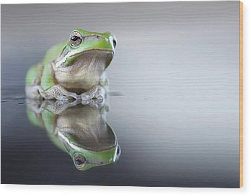Sad Green Frog Wood Print by Darren Iz Photography
