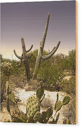 Saguaro Cactus Dance Wood Print by Gregory Dyer