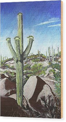 Saguaro National Park Wood Print by Drusilla Montemayor