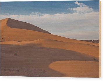 Sahara Sanddunes Wood Print by Leo Keijzer
