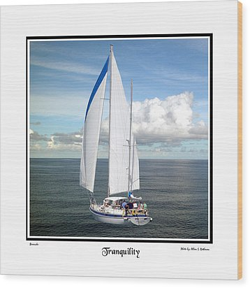 Sailboat Tranquility Wood Print