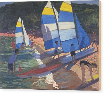 Sailboats South Of France Wood Print by Andrew Macara
