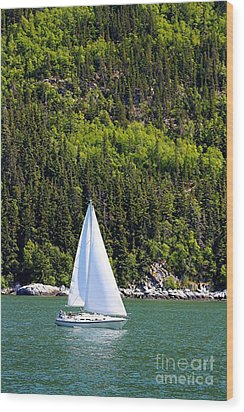 Wood Print featuring the photograph Sailing The Wilderness by Laurinda Bowling