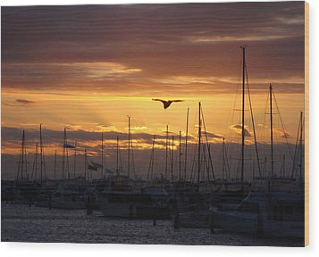 Sails At Sunset Wood Print by Kelly Jones