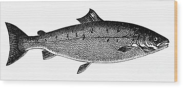 Salmon Wood Print by Granger