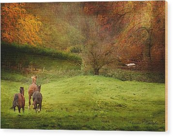 Salthrop Park Wood Print by Dorota Kudyba