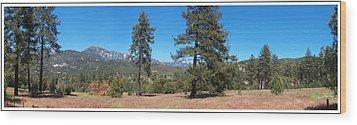 San Bernardino Forest Vista Wood Print by Glenn McCarthy Art and Photography