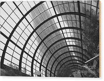 San Francisco Crocker Galleria - 5d17869 - Black And White Wood Print by Wingsdomain Art and Photography