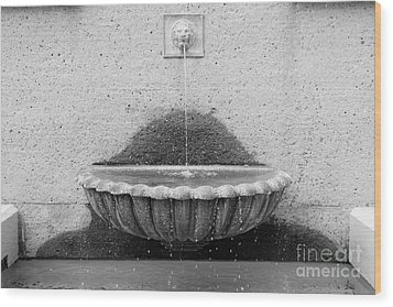 San Francisco Crocker Galleria Roof Garden Fountain - 5d17894 - Black And White Wood Print by Wingsdomain Art and Photography