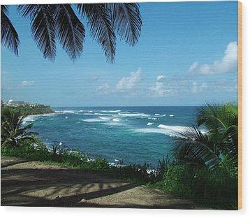 San Juan Puerto Rico Wood Print by Steve Monell
