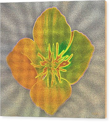 Sand Flower Wood Print by Mitch Shindelbower