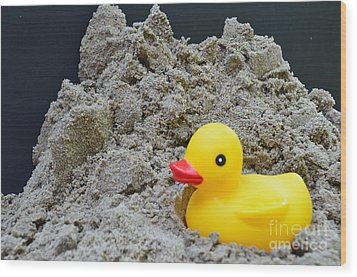 Sand Pile And Ducky Wood Print by Randy J Heath
