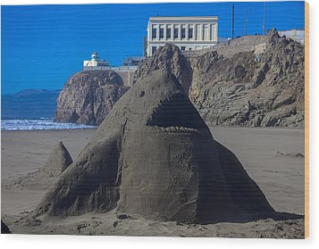 Sand Shark At Cliff House Wood Print by Garry Gay