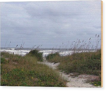 Sandy Path To The Beach Wood Print by Patricia Taylor