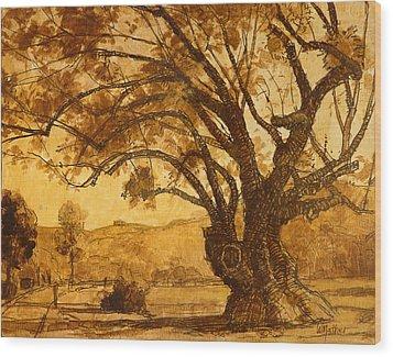 Sanmarin California Tree Wood Print by Bill Mather