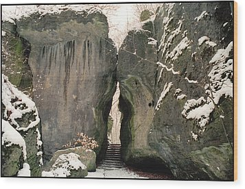 Sanspareil Wood Print by Franz Roth
