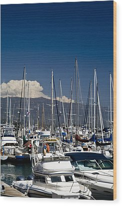 Santa Barbara Harbor Wood Print by Gary Brandes
