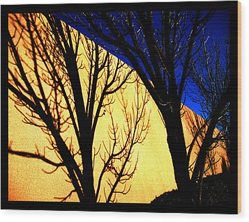 Wood Print featuring the photograph Santa Fe Afternoon by Susanne Still