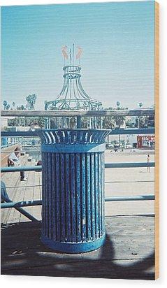 Santa Monica Pier Wood Print by Lola Connelly