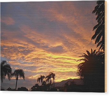 Wood Print featuring the photograph Sarasota Sunset by Sheila Silverstein