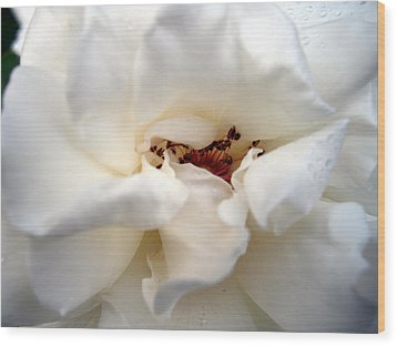 Satin White Wood Print