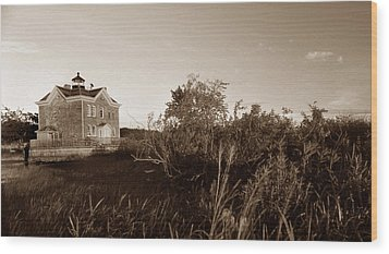 Saugerties Lighthouse Wood Print by Skip Willits
